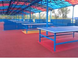 Павильон для игры в настольный теннис, Остров Татышева