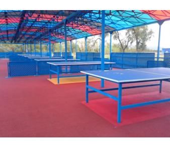 Павильон для игры в настольный теннис, Остров Татышева>
